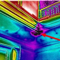 Zobrazowanie wilgoci Kamerą Termowizyjną